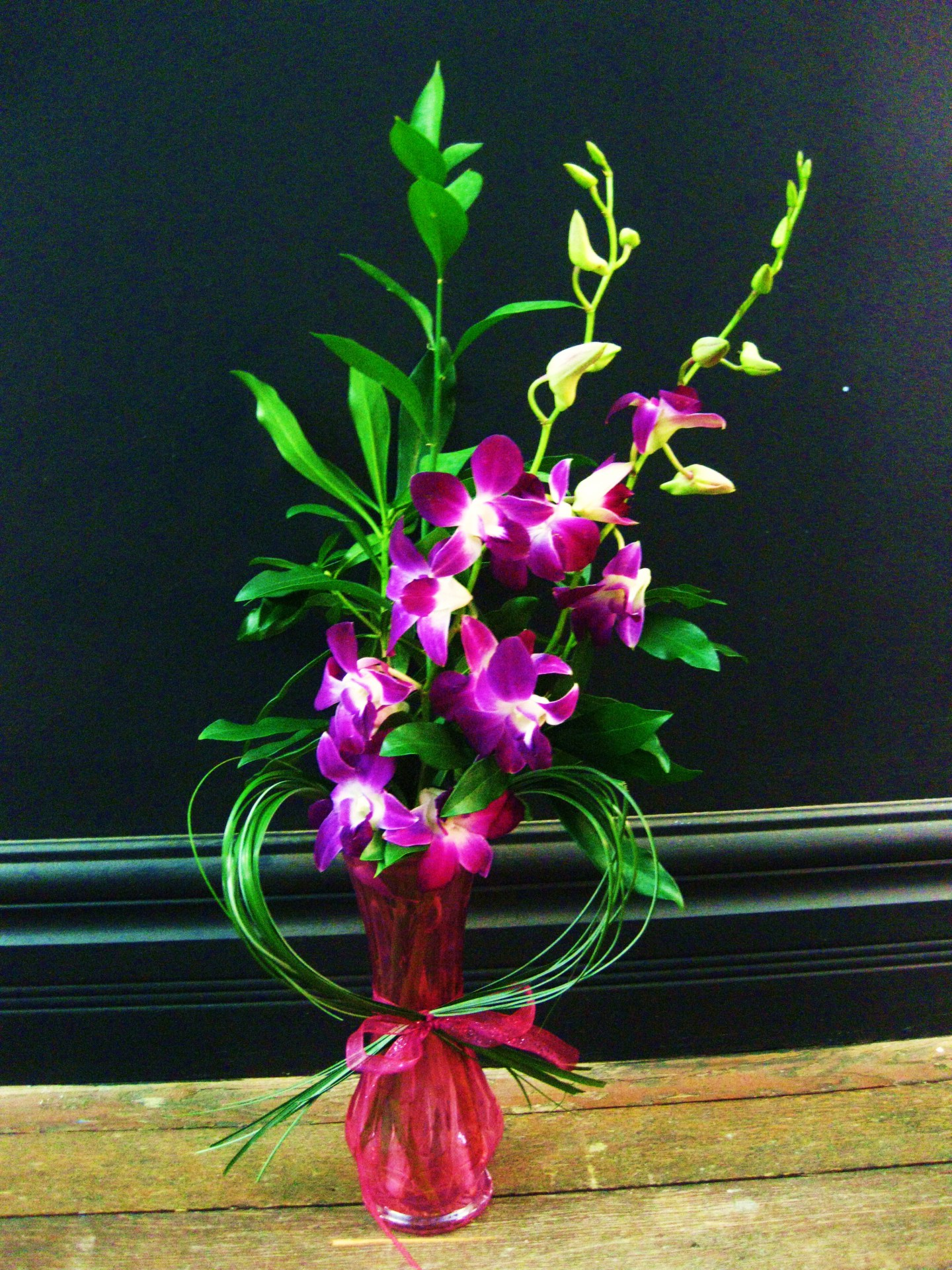 orchids, happy, cheerful flowers, bouquet, entertainers, vase, lumsden, regina, craven, regina beach, buena vista